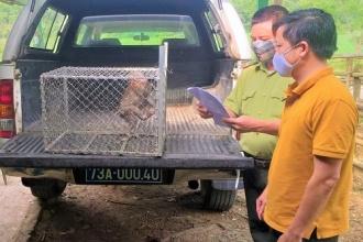 Hạt Kiểm lâm VQG Phong Nha - Kẻ Bàng đẩy mạnh tuyên truyền, vận động người dân giao nộp vũ khí và động vật hoang dã